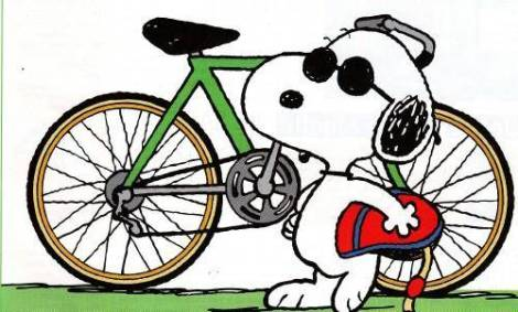 snoopy cycling