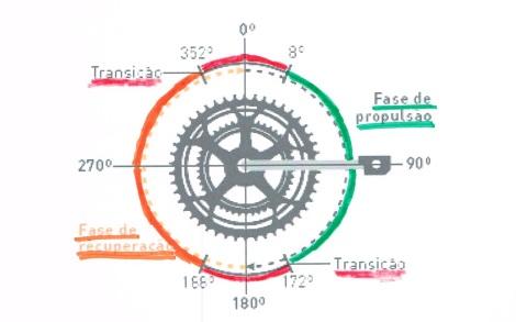 O ciclista típico apenas exerce força nos pedais de forma descendente (o movimento assinalado a verde), alguns puxam (movimento assinalado a laranja) e raros são os que promovem as transições com aplicação de força.