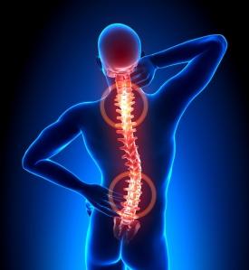 Muitas das lesões sofridas na coluna dorsal, resultam de falta de tonificação muscular que lhe deveria dar suporte.