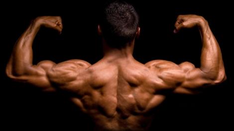 A tonificação e reforço dos musculos nas costas assume um papel fundamental para o ciclista. Evitará que desenvolvas patologias como por exemplo as hérnias e permitir-te-á ter uma posição mais agressiva e de rendimento em cima da bicicleta.