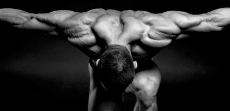 reparacao muscular