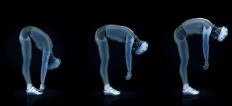 flexibilidade bikefit biomecanica