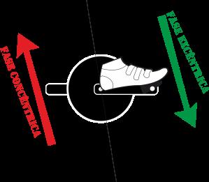 pedalada cadencia movimento excentrico excentrico