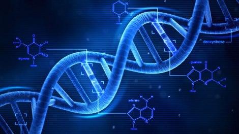 adn codigo genetico genetica alta competição